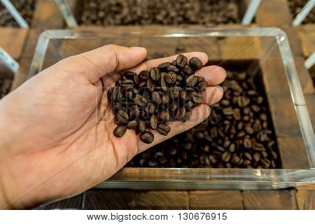 Coffee beans in a man's hand and container in the background