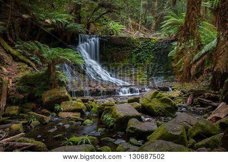 Small waterfall in the Tasmanian Wilderness. Australia