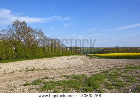 Chalky Soil In Agricultural Countryside