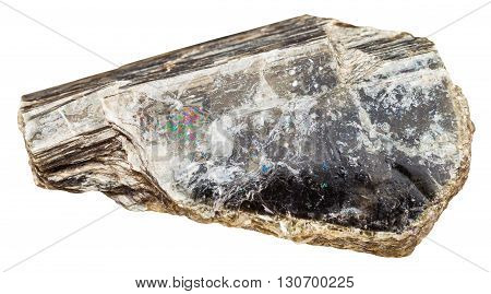 Piece Of Muscovite (common Mica) Isolated On White