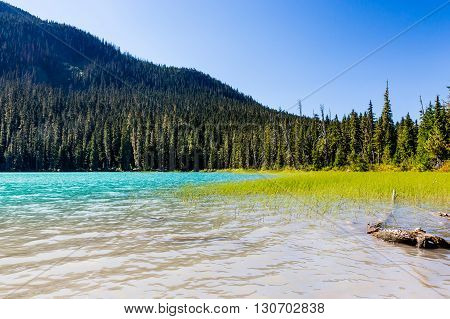 Lower Joffre Lake, Joffre Lake Provincial Park, Bc, Canada