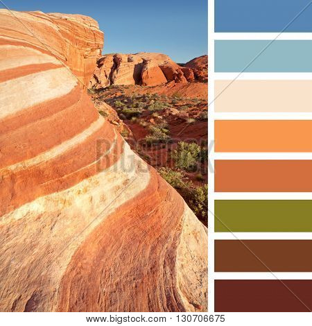 Colourful wave rock formation in the Valley of Fire state park, near Las Vegas, Nevada, USA. In a colour palette with complimentary colour swatches.