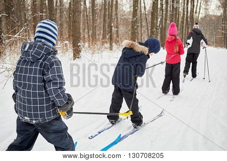 Tall man pulls three children chained with ski-poles one behind other on skis in winter park.