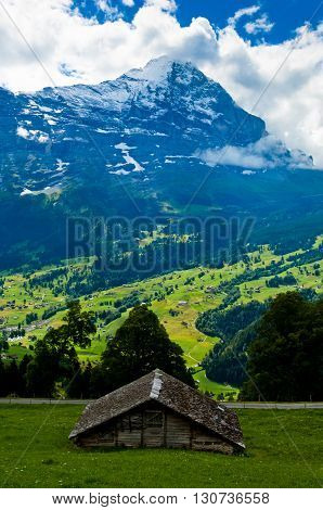 Eiger view from Grindelwald, Swiss Alps - snow capped mountains and deep valleys stunning view breathtaking panorama