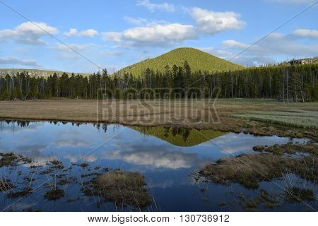the clouds and mountain reflect in a small pond