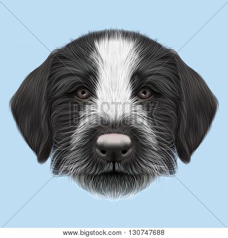 Illustrated Portrait of German Wirehaired Pointer puppy. Cute brown face of hunting dog on blue background.