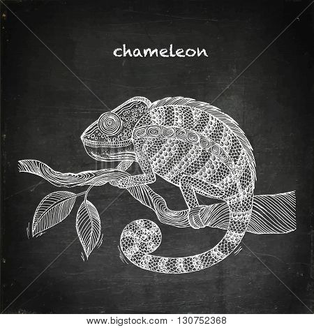 Chameleon on leaf. Chalk board vector stock illustration