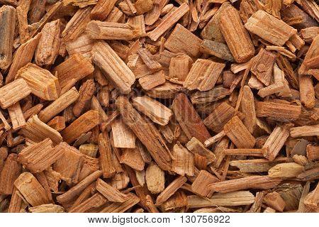 Organic Himalayan cedar or Devadar (Cedrus deodara) Chips. Macro close up background texture. Top view.