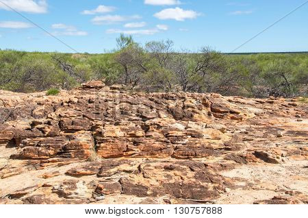 Native sandstone and green flora in the bushland at Kalbarri National Park under a blue sky with clouds in Western Australia.