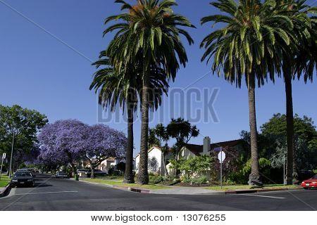 A dream home in California.
