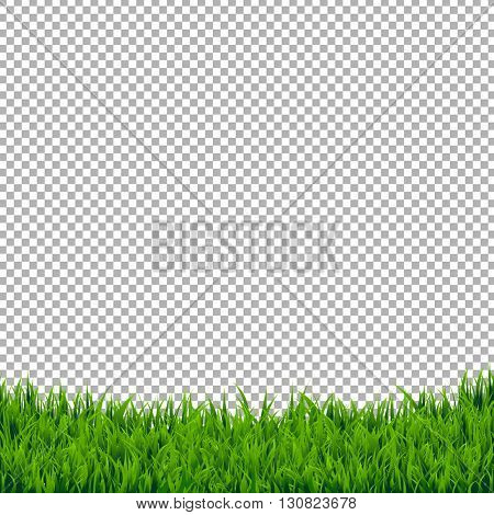 Green Grass Border Isolated, Isolated on Transparent Background, With Gradient Mesh, Vector Illustration