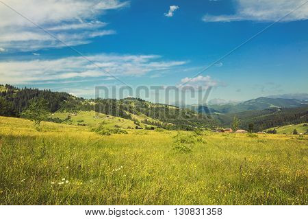 Idyllic landscape in the Alps with fresh green meadows and blooming flowers and snow-capped mountain tops in the background. Retro color.