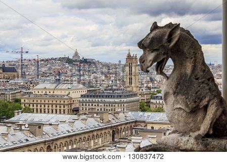 Paris, France - May 13: This is aerial view of Paris with one of the statues of chimeras of Notre-Dame de Paris May 13, 2013 Paris, France.