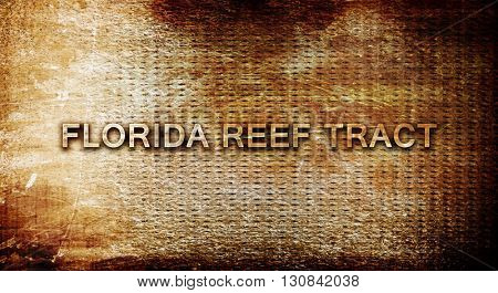Florida reef tract, 3D rendering, text on a metal background