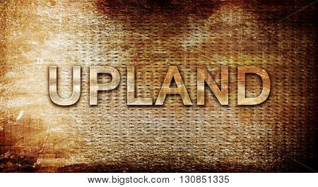 upland, 3D rendering, text on a metal background