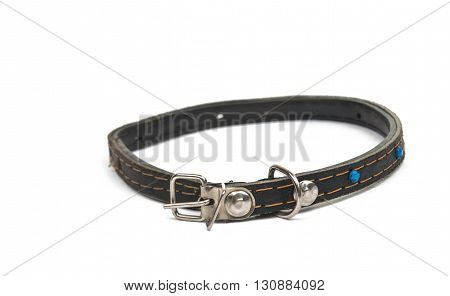 clasp cat collar isolated on white background