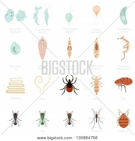 Vector image of the Set of icons of parasites