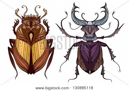 Insect set in color with a tribal pattern. Doodle scarab and beetle deer separate from the background. Vector element for your creativity