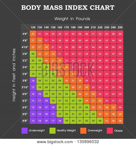 Body Mass Index chart, height and weight infographic