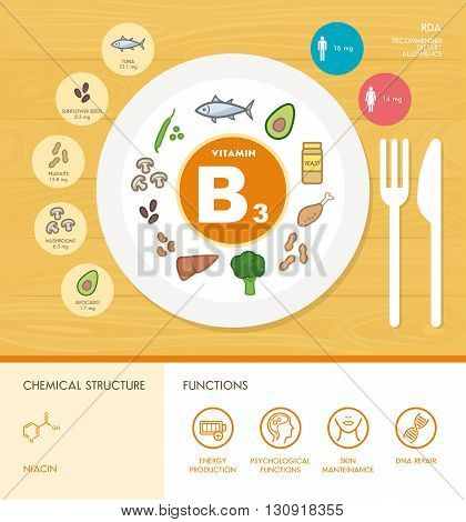 Vitamin B3 nutrition infographic with medical and food icons: diet healthy food and well being concept