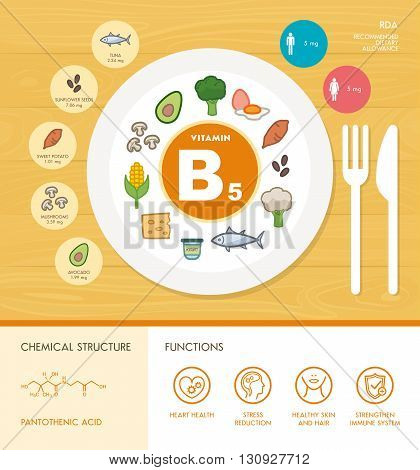 Vitamin B5 nutrition infographic with medical and food icons: diet healthy food and well being concept