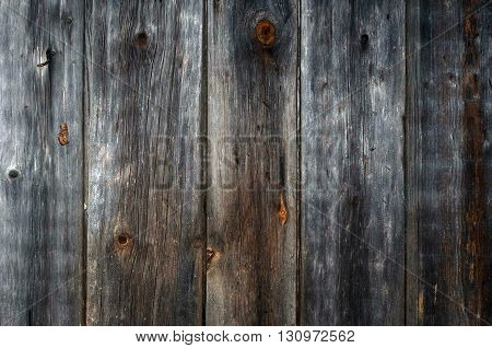 The old wood paneling. Location vertical. The background. Darkened by the time the tree. Rustic. Close-up.