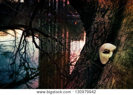 Vintage Venetian Mask on an Old Tree by a Lake
