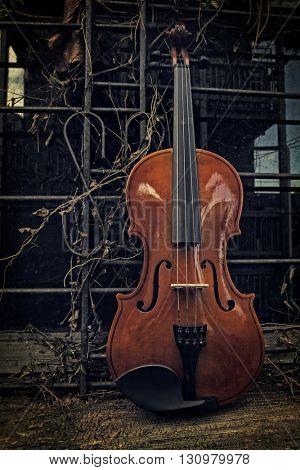 Violin on Window Shelf