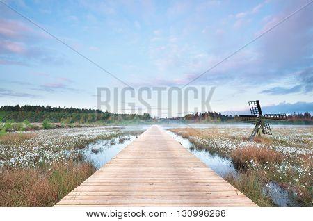 wooden path on swamp at misty sunrise Drenthe Netherlands