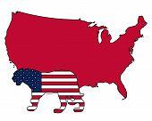 Detailed and colorful illustration of jaguar USA poster