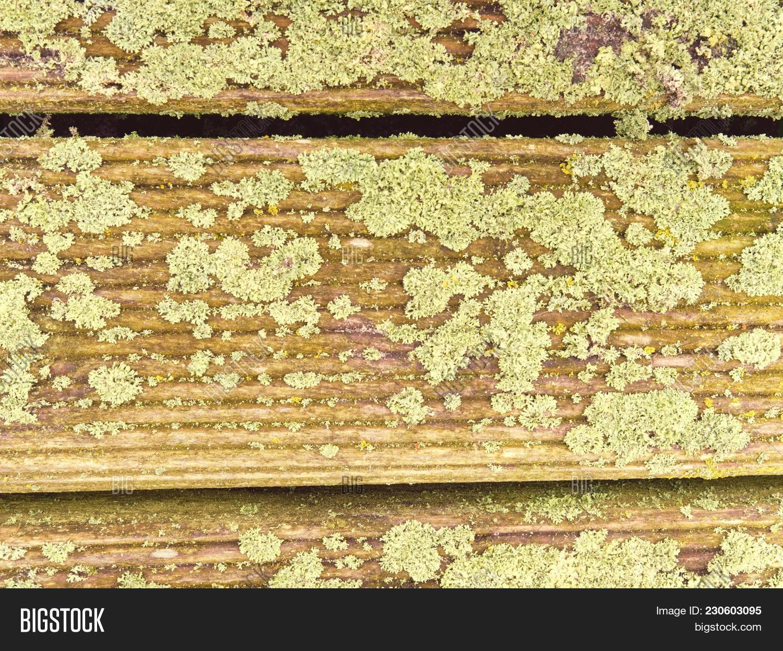 Hardwood Board Made Image & Photo (Free Trial) | Bigstock
