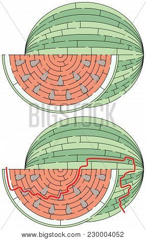 Easy Watermelon Maze For Younger Kids With A Solution