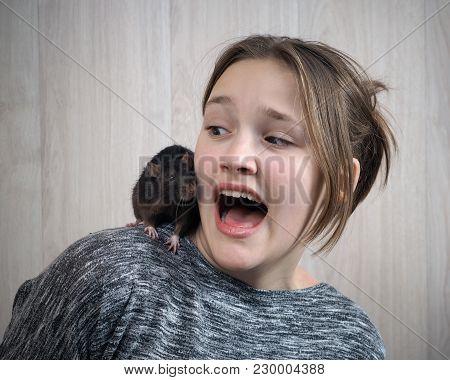 Rat On A Girl's Shoulder
