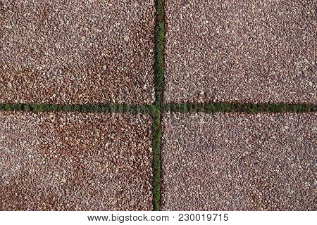 Pink Pavement With Crossed Joints With Moss