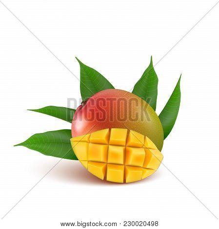 Mango Fruit For Fresh Juice, Jam, Yogurt, Pulp. 3d Realistic Yellow, Green, Red, Orange Ripe Mango C