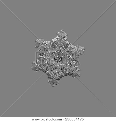 Snowflake Isolated On Uniform Gray Background. Macro Photo Of Real Snow Crystal: Small Stellar Dendr