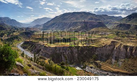 The Colca Canyon In Peru In Arequipa Departement - View Of Terraced Fields