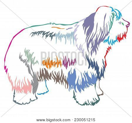 Colorful Contour Decorative Portrait Of Standing In Profile Old English Sheepdog, Vector Isolated Il