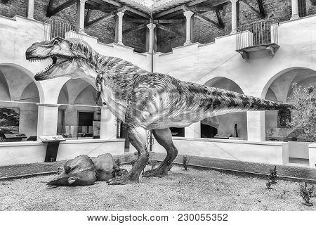 Tyrannosaurus Rex Dinosaur, Aka T-rex, At Exhibition In Gubbio, Italy