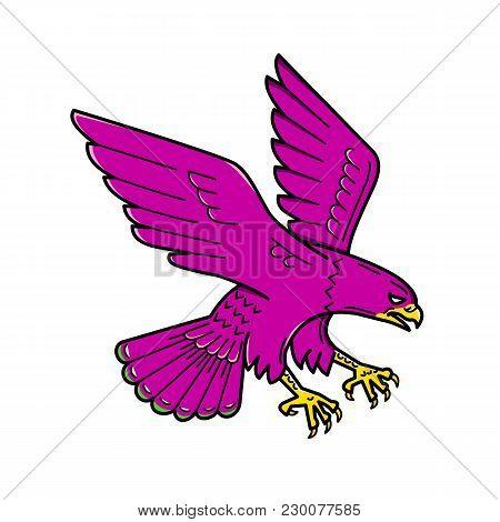 Mono Line Illustration Of A Peregrine Falcon, Falco Peregrinus, Duck Hawk, A Widespread Bird Of Prey