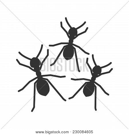 Ants Glyph Icon. Silhouette Symbol. Negative Space. Vector Isolated Illustration