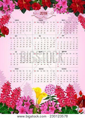 Flower Calendar Template Of Spring Or Summer Flowers. Vector Design Monthly Calendar In Floral Frame
