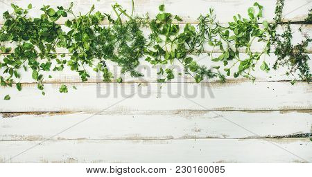 Flat-lay Of Various Fresh Green Herbs. Parsley, Mint, Dill, Cilantro, Rosemary, Thyme Over Rustic Wh