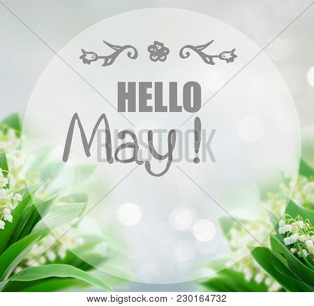 Bunch Of Lilly Of Valley Flowers Over Gray Bokeh Background With Hello May Greetings