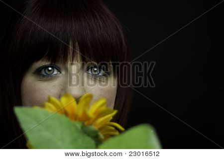 Girl Behind Sunflower Against Black
