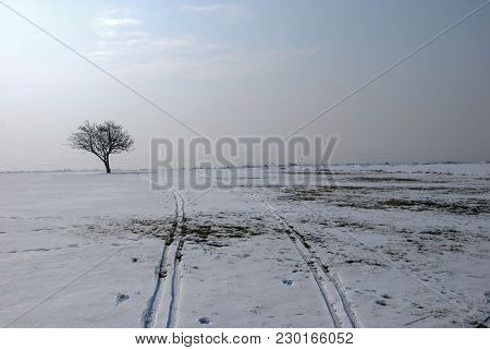 Melting Snow With Two Skitracks In A Misty Landscape