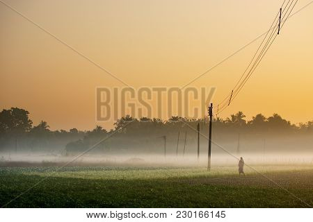 Winter Morning Scene - Rural India