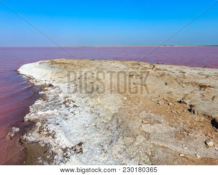 Pink Extremely Salty Syvash Lake, Colored By Microalgae With Crystalline Salt Depositions. Also Know