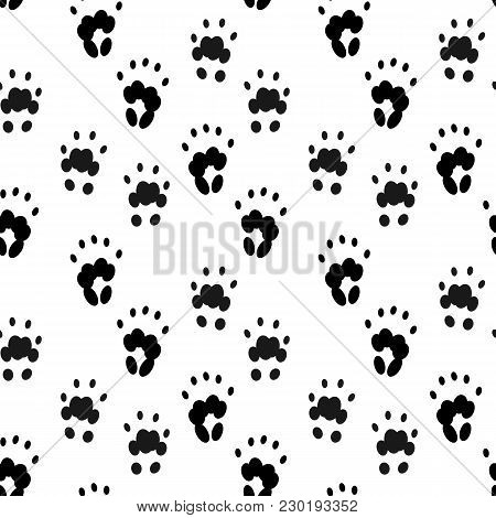 Seamless Pattern With Animal's Footprint. Black Imprint Of Groundhog Foot On White Background. Vecto