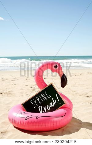 a signboard with the text spring break written in it and a swim ring in the shape of a pink flamingo, on the sand of a beach, with the ocean in the background